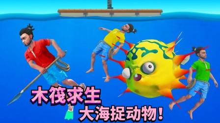 暑假版木筏求生 罗修天洪42:上岛抓到了一只鸡!