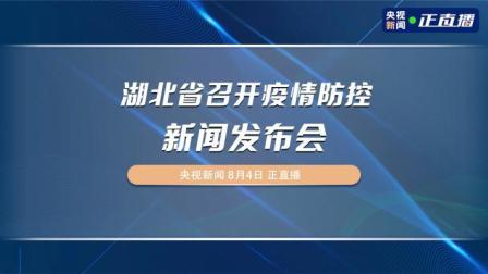 湖北省召开疫情防控新闻发布会