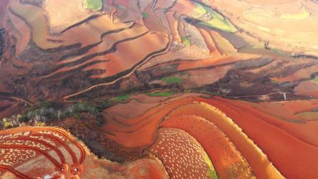 航拍七彩云南:上帝视角下的东川红土地,五彩斑斓,大气震撼
