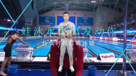 中游体育:蛙泳水下出发动作什么时候打蝶泳腿