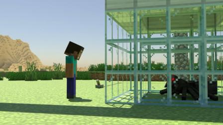 我的世界动画-史蒂夫 vs 蜘蛛