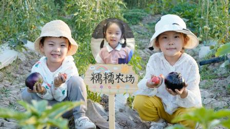 农场vlog:苏菲娅和由旦发现糯糯农场的西瓜花不见了