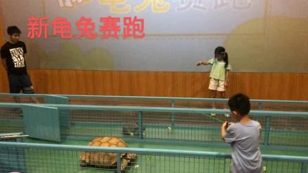 一直真实的故事,不还还是乌龟h灬竺管第第第一名😂😂😂