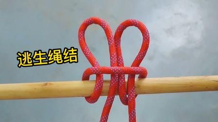 高空下降绳结,遇到危险时可以用来逃生,这个方法真的太实用了