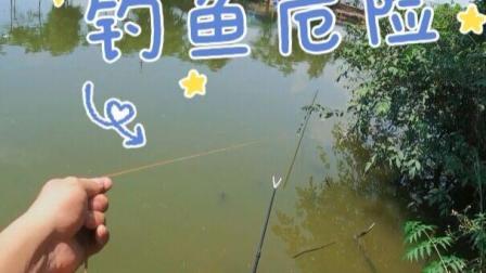 好好钓个鱼却被鱼打了一耳光