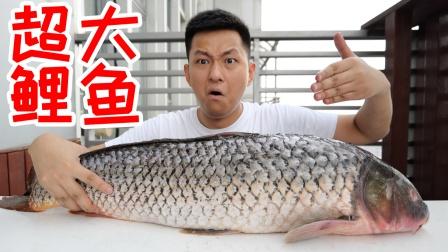 用超级大的鲤鱼做一个糖醋鲤鱼,味道竟然和烧鸡一样!普通版2大