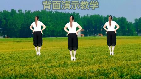 火爆新舞【七夕的红月亮】32步背面演示更好学