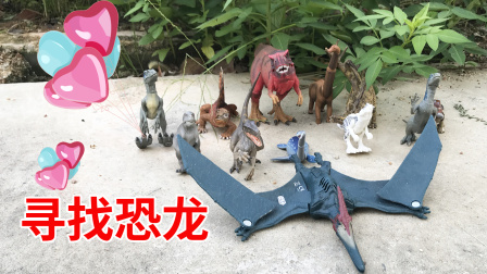 清晨早早起去草丛寻宝,意外发现恐龙玩具,霸王龙翼龙通通都有