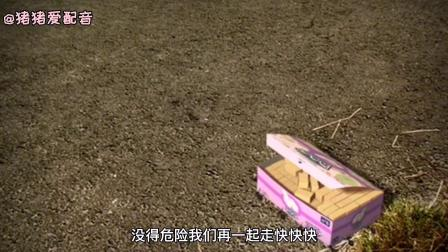 小蚂蚁画大饼,竟然造出金字塔?