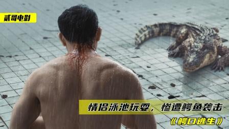 小情侣被困6米深泳池,还遭到鳄鱼袭击,为活下去两人不择手段