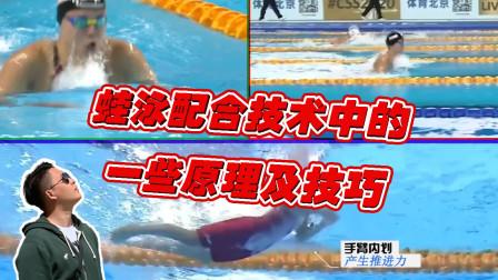 中游体育:蛙泳配合技术中的一些原理及技巧