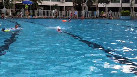 游泳的技巧与方法,自由泳视频教程,200米自由泳腿训练