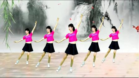 广场舞《女儿情》动感舞步,瘦身减肥,80后辣妈跳出好身材!