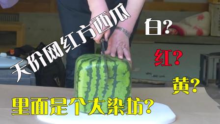 日本天价网红方西瓜,土豪花上万买来,切开后令人大失所望