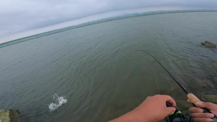 7克铅头钩,打到结构区就有口,钓海鲈鱼就是这么简单粗暴