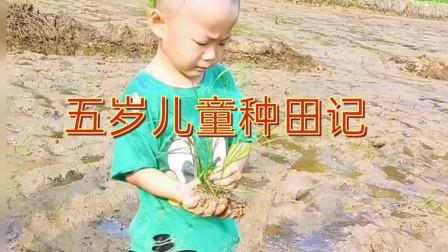 穷人的孩子早当家,年纪轻轻就知道种田了,生活没办法