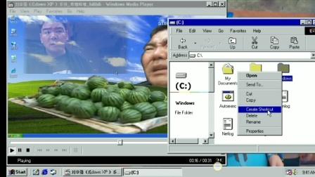 刘华强《GuadowsXP》系统有蓝屏死机