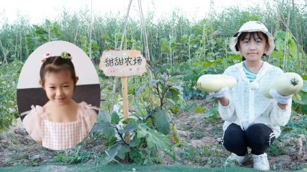 农场vlog:艾米儿在甜甜农场摘到了茭瓜和辣椒