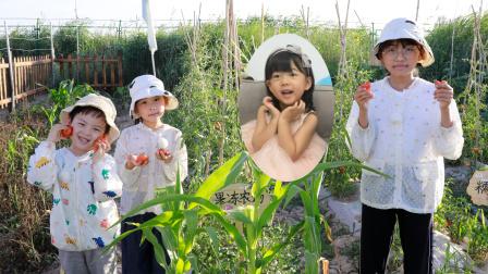 农场vlog:苏菲娅和艾米儿在果冻农场发现了一个小西瓜