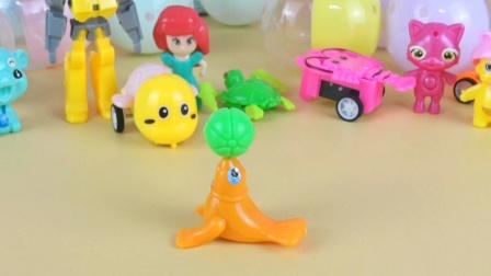 神秘好玩的小海豹奇趣蛋