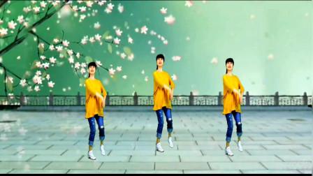 精选广场舞《江南夜色美》舞步优美,瘦身减肥!