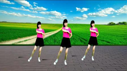 动感DJ广场舞《叫一声我的哥》韵律优美,舞姿时尚,精彩无限!