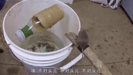 表面看似水桶,实际上是一个捕鼠神器!