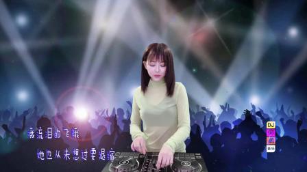 崔伟立-流泪的飞蛾(DJ何鹏版)