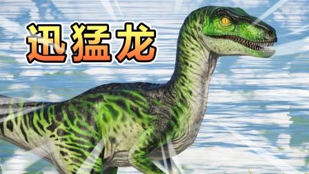 恐龙03变形记:恶霸三龙似鸡龙侵占地盘,变身迅猛龙驱逐恶霸