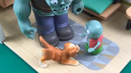 童年趣事:捡到一只流浪狗
