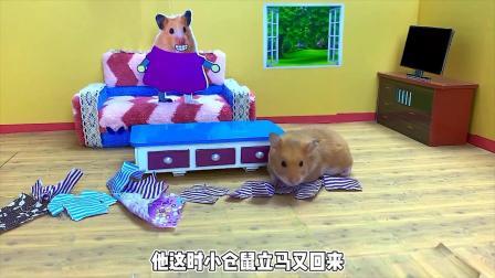 小猪肚子疼,仓鼠医生逃离迷宫,帮她看病