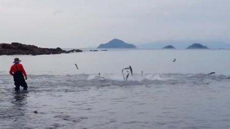 渔网撒下去,好多鱼跳了起来