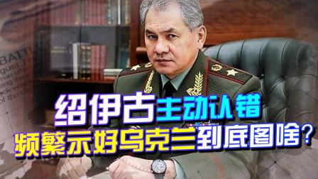 我的错,绍伊古将军罕见认怂,俄罗斯频繁示好乌克兰,究竟图啥?