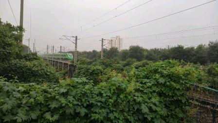 D706次上海-北京