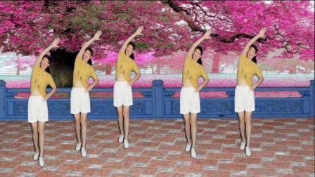 阿娜广场舞-心中有曲自然嗨-背面