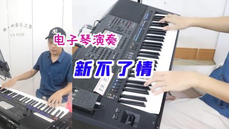 电子琴演奏《新不了情》,不一样的情调