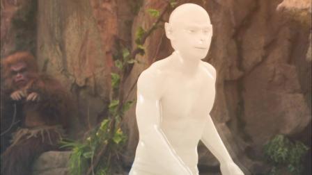 孙悟空最神奇的身体部位是哪里?
