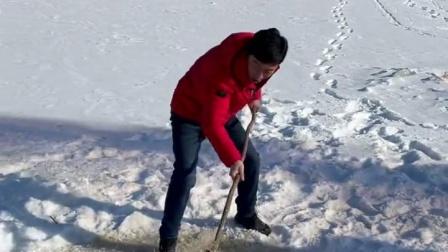 户外捕鱼 冰窟窿搅上来大红鲤鱼了。