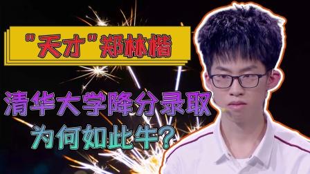 天才郑林楷:清华大学降分录取,最强大脑全球脑王,为何如此优秀