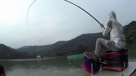 没时间外出钓鱼,呆家里也是看漂看钓鱼,这视频漂相舒服