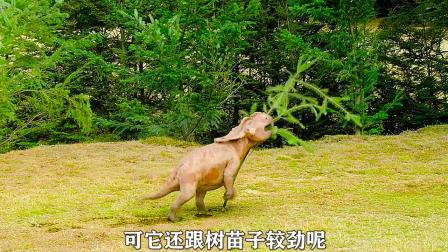 1. 小恐龙打小被人欺负,在磨难中逆风成长