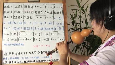 学唱谱《月光下的凤尾竹》抒情版,葫芦丝教学,第一课,视唱简谱