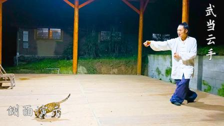 武当太极拳硬核教学,从小擒手到右踢腿的转换方法,简单易懂