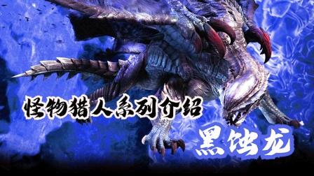 怪物猎人电影介绍之黑蚀龙,光与暗的轮回之龙