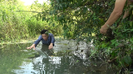 小莫带大哥河里捕鱼,第一天就遇到大黑鱼,力气太猛两人才能制服