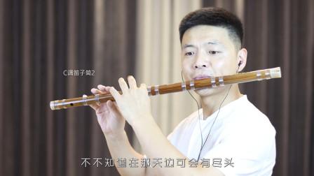 经典粤语老歌《顺流逆流》笛子版,旋律优美,百听不厌!