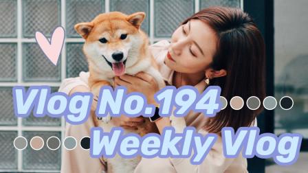 【Miss沐夏】Vlog No.194 Weekly Vlog 久违的看电影 冒雨郊区小聚 日常生活