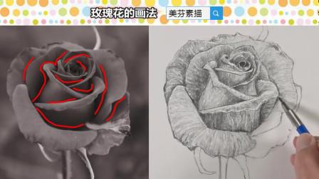 玫瑰花的画法,简单画出漂亮的花瓣,素描基础干货教程
