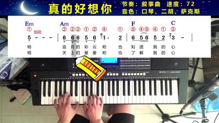 《真的好想你》 电子琴独奏:和弦简谱 加指法同步显示