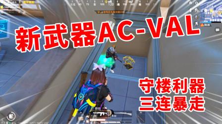 狂战士杰西:新武器AC-VAL守楼,无后座射速快,来多少都没用!